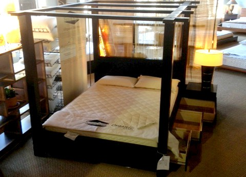 Storage Canopy Bed