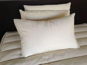 Organic cotton covered down pillows